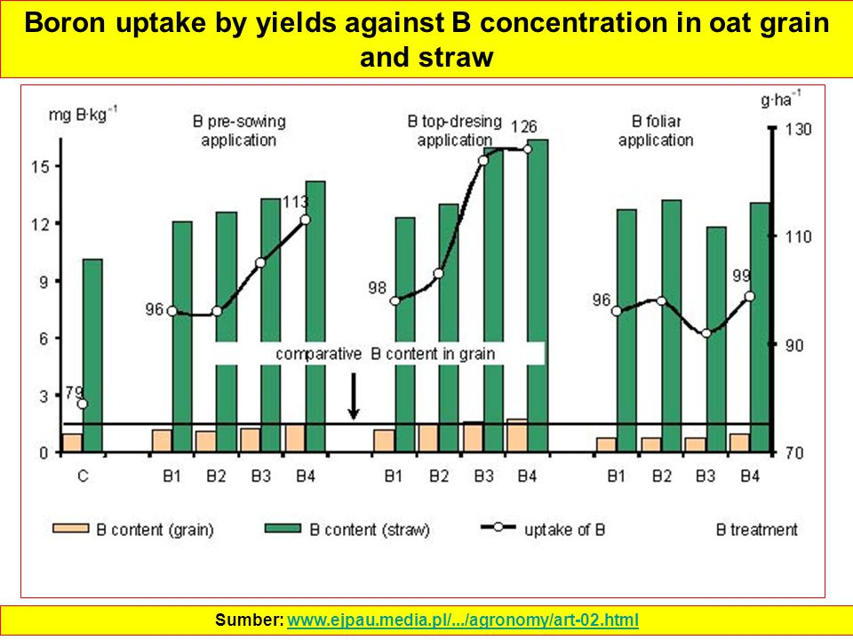 Boron uptake by yields against B concentration in oat grain and straw Sumber: www.ejpau.media.pl/.../agronomy/art-02.htmlwww.ejpau.media.pl/.../agrono