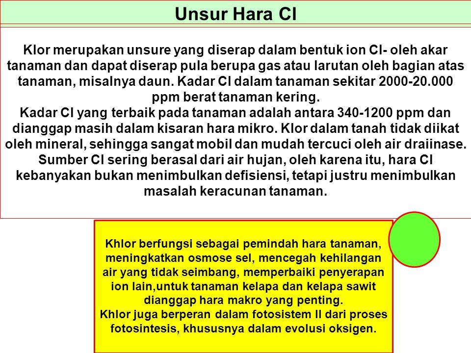 Unsur Hara Cl Klor merupakan unsure yang diserap dalam bentuk ion Cl- oleh akar tanaman dan dapat diserap pula berupa gas atau larutan oleh bagian ata