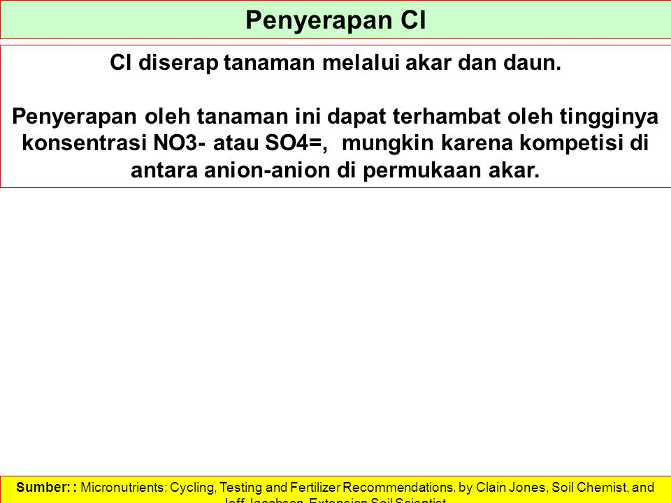 Penyerapan Cl Cl diserap tanaman melalui akar dan daun. Penyerapan oleh tanaman ini dapat terhambat oleh tingginya konsentrasi NO3- atau SO4=, mungkin