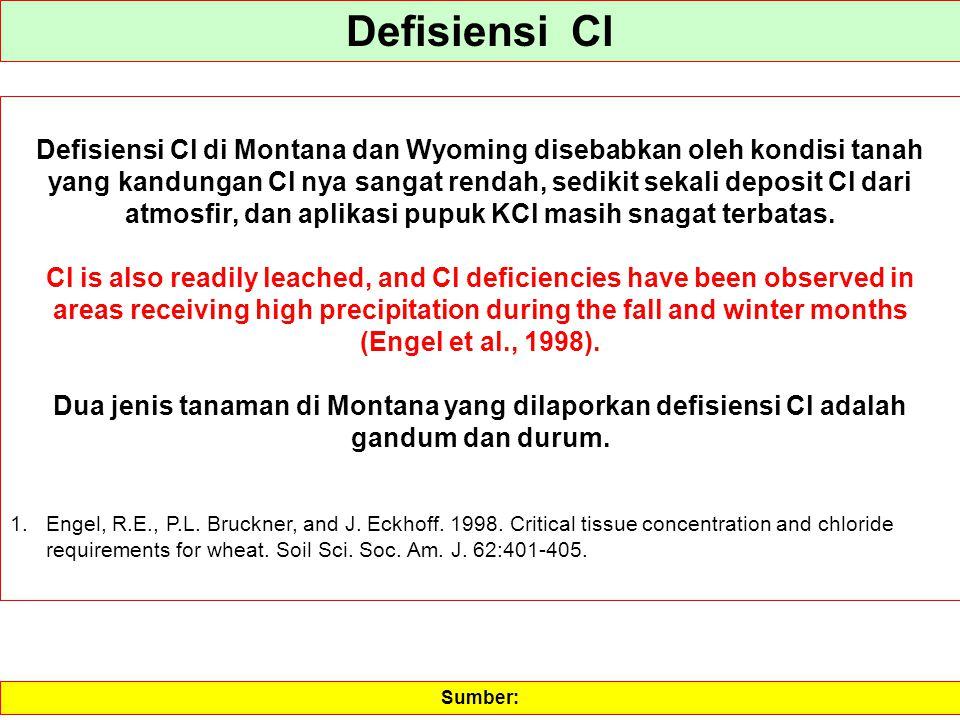 Defisiensi Cl Defisiensi Cl di Montana dan Wyoming disebabkan oleh kondisi tanah yang kandungan Cl nya sangat rendah, sedikit sekali deposit Cl dari a