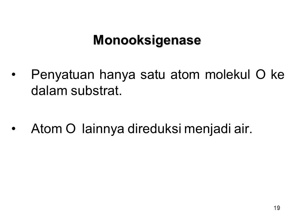 19 Monooksigenase Penyatuan hanya satu atom molekul O ke dalam substrat. Atom O lainnya direduksi menjadi air.