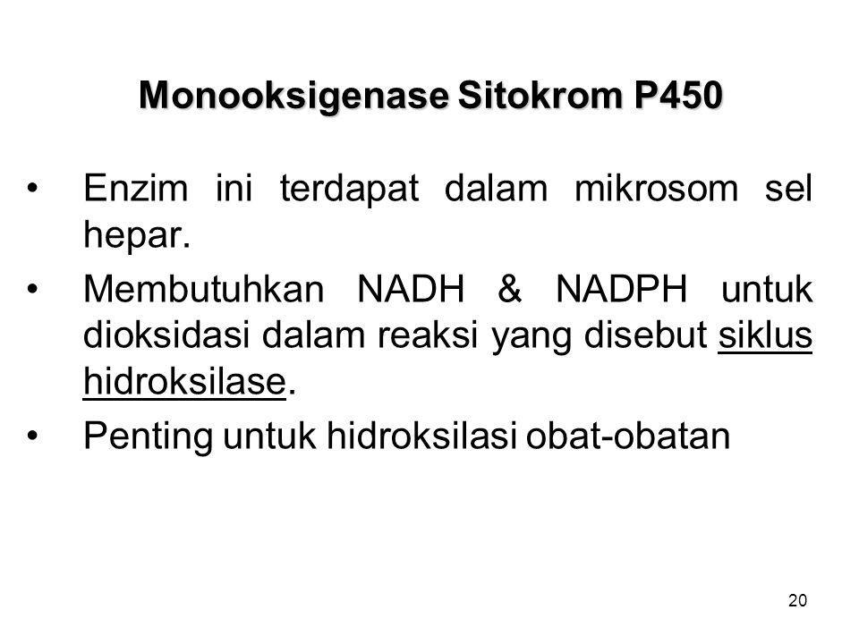 20 Monooksigenase Sitokrom P450 Enzim ini terdapat dalam mikrosom sel hepar. Membutuhkan NADH & NADPH untuk dioksidasi dalam reaksi yang disebut siklu