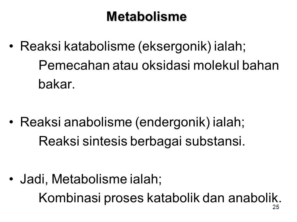 25 Metabolisme Reaksi katabolisme (eksergonik) ialah; Pemecahan atau oksidasi molekul bahan bakar. Reaksi anabolisme (endergonik) ialah; Reaksi sintes
