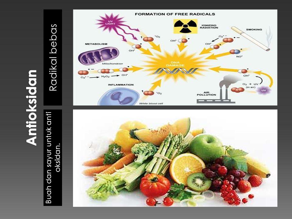 Radikal bebas Buah dan sayur untuk anti oksidan.