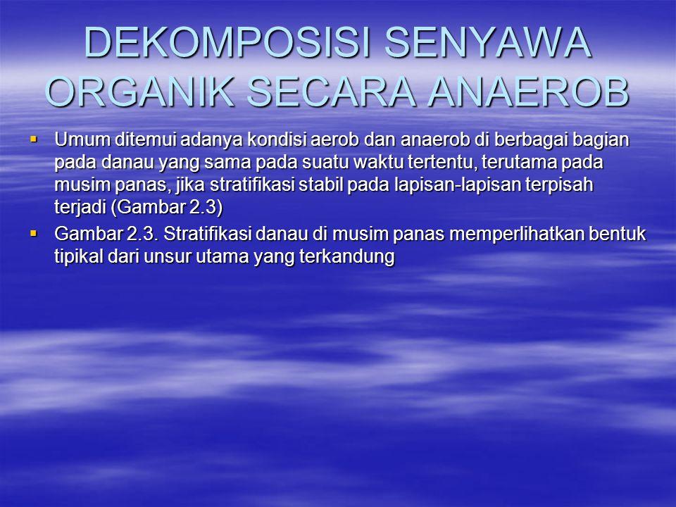 DEKOMPOSISI SENYAWA ORGANIK SECARA ANAEROB  Umum ditemui adanya kondisi aerob dan anaerob di berbagai bagian pada danau yang sama pada suatu waktu te