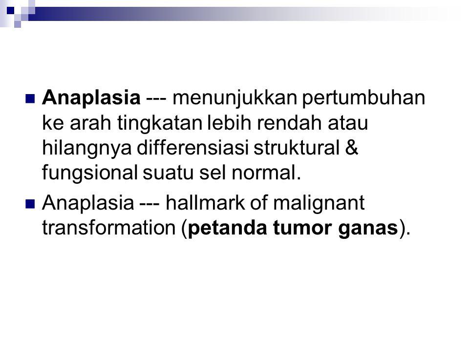 Anaplasia --- menunjukkan pertumbuhan ke arah tingkatan lebih rendah atau hilangnya differensiasi struktural & fungsional suatu sel normal. Anaplasia