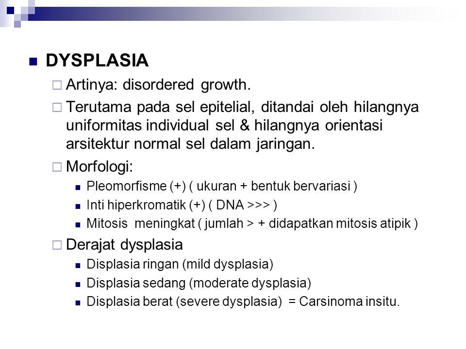 DYSPLASIA  Artinya: disordered growth.  Terutama pada sel epitelial, ditandai oleh hilangnya uniformitas individual sel & hilangnya orientasi arsite