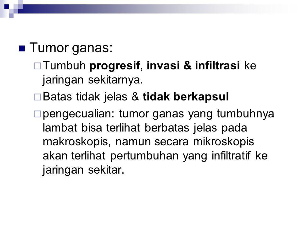 Tumor ganas:  Tumbuh progresif, invasi & infiltrasi ke jaringan sekitarnya.  Batas tidak jelas & tidak berkapsul  pengecualian: tumor ganas yang tu