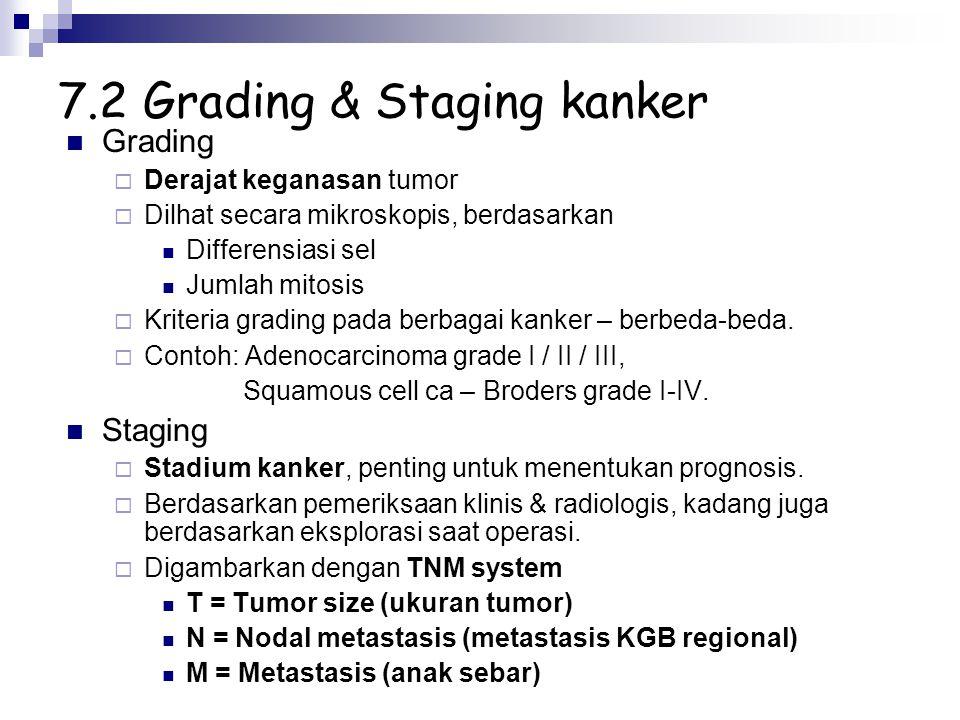 7.2 Grading & Staging kanker Grading  Derajat keganasan tumor  Dilhat secara mikroskopis, berdasarkan Differensiasi sel Jumlah mitosis  Kriteria gr