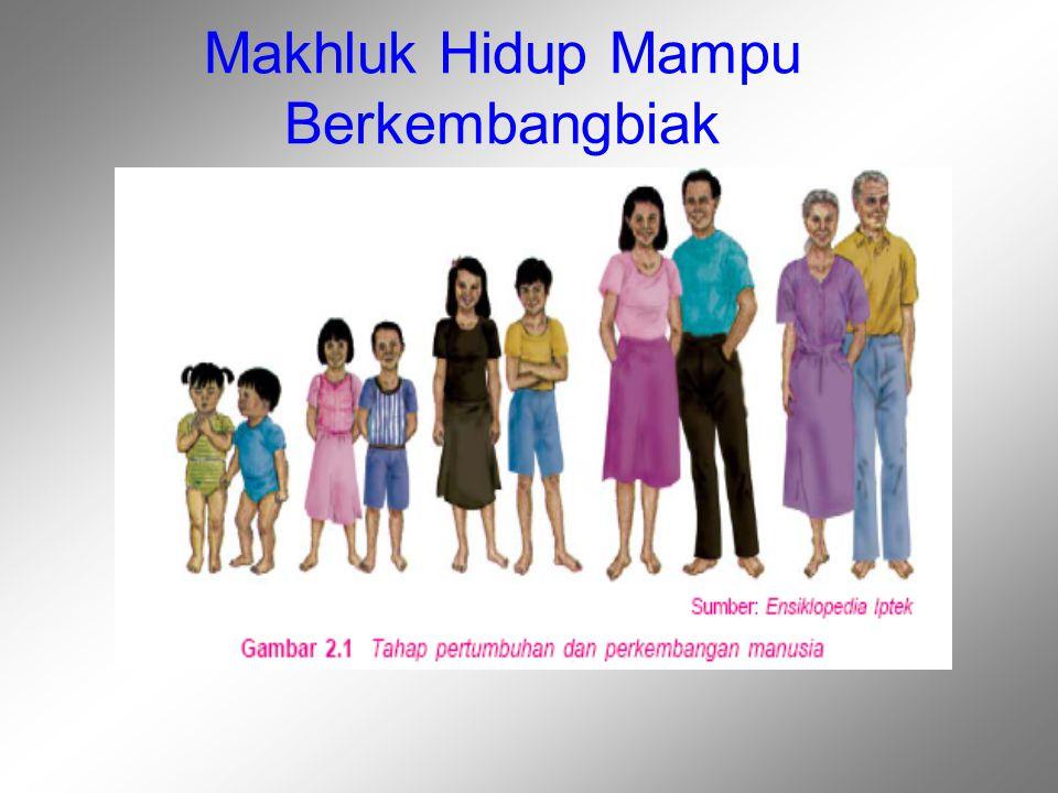 Organ Perkembangbiakan(Reproduksi) Manusia Gambar 2.2 Alat perkembangbiakan wanita Gambar 2.3 Alat perkembangbiakan pria