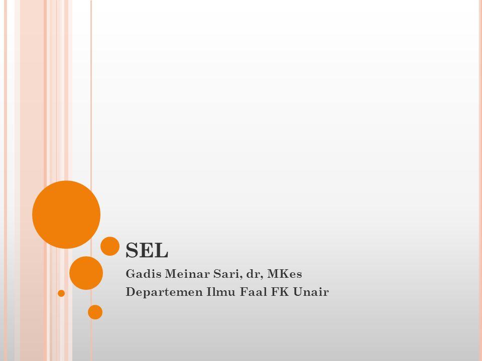 SEL Gadis Meinar Sari, dr, MKes Departemen Ilmu Faal FK Unair