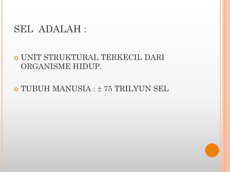 SEL ADALAH : UNIT STRUKTURAL TERKECIL DARI ORGANISME HIDUP. TUBUH MANUSIA :  75 TRILYUN SEL