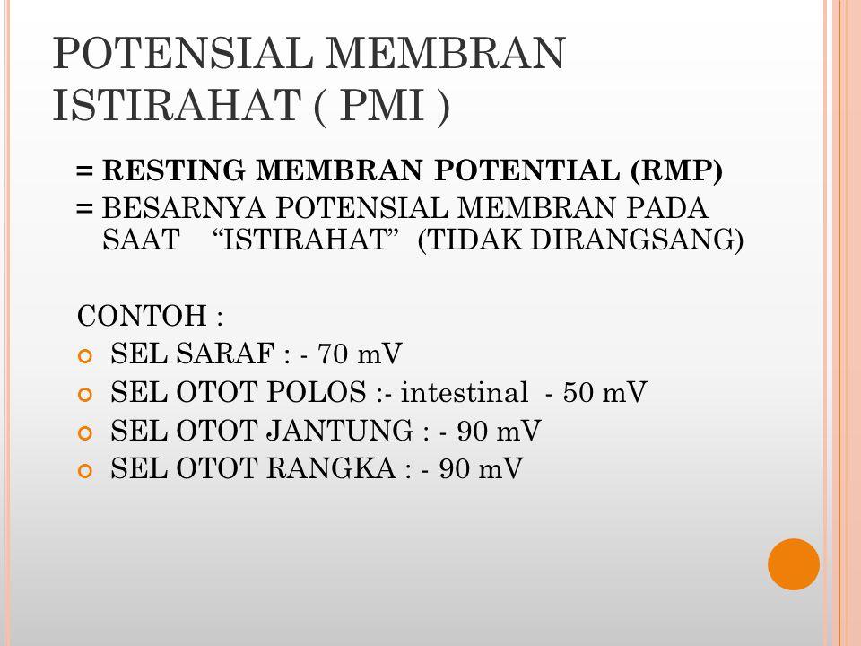 """POTENSIAL MEMBRAN ISTIRAHAT ( PMI ) = RESTING MEMBRAN POTENTIAL (RMP) = BESARNYA POTENSIAL MEMBRAN PADA SAAT """"ISTIRAHAT"""" (TIDAK DIRANGSANG) CONTOH : S"""