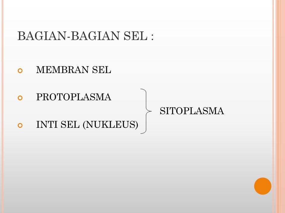 MEMBRAN SEL TERDIRI DARI PROTEIN (55%) * PROTEIN INTEGRAL  Saluran; pori- pori * PROTEIN PERIFER  Enzim LEMAK, terdiri dari : - FOSFOLIPID 25% - KOLESTEROL 13% - LIPID LAIN 4% KARBOHIDRAT 3% - GLIKOPROTEIN - GLIKOLIPID