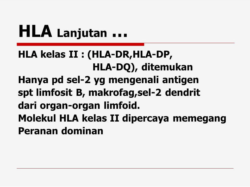 HLA Lanjutan … HLA kelas II : (HLA-DR,HLA-DP, HLA-DQ), ditemukan Hanya pd sel-2 yg mengenali antigen spt limfosit B, makrofag,sel-2 dendrit dari organ-organ limfoid.