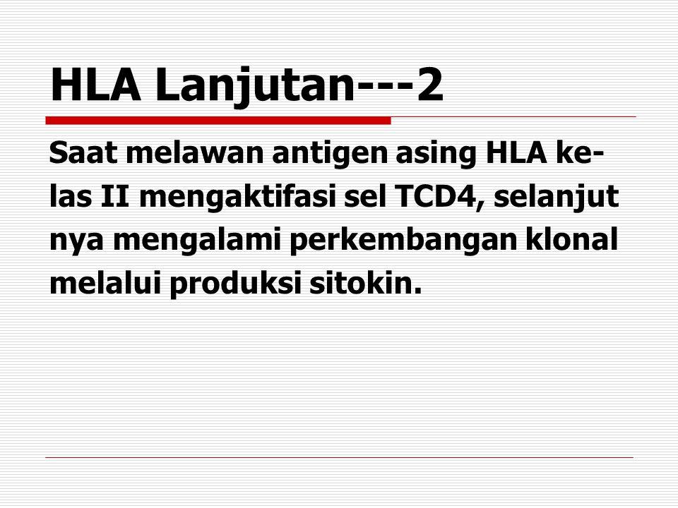 HLA Lanjutan---2 Saat melawan antigen asing HLA ke- las II mengaktifasi sel TCD4, selanjut nya mengalami perkembangan klonal melalui produksi sitokin.