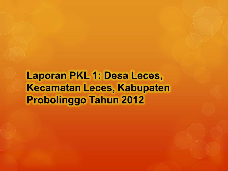 Ada organisasi informal bernama Rukun kepaten merupakan perkumpulan untuk mengaji dan shalawatan.