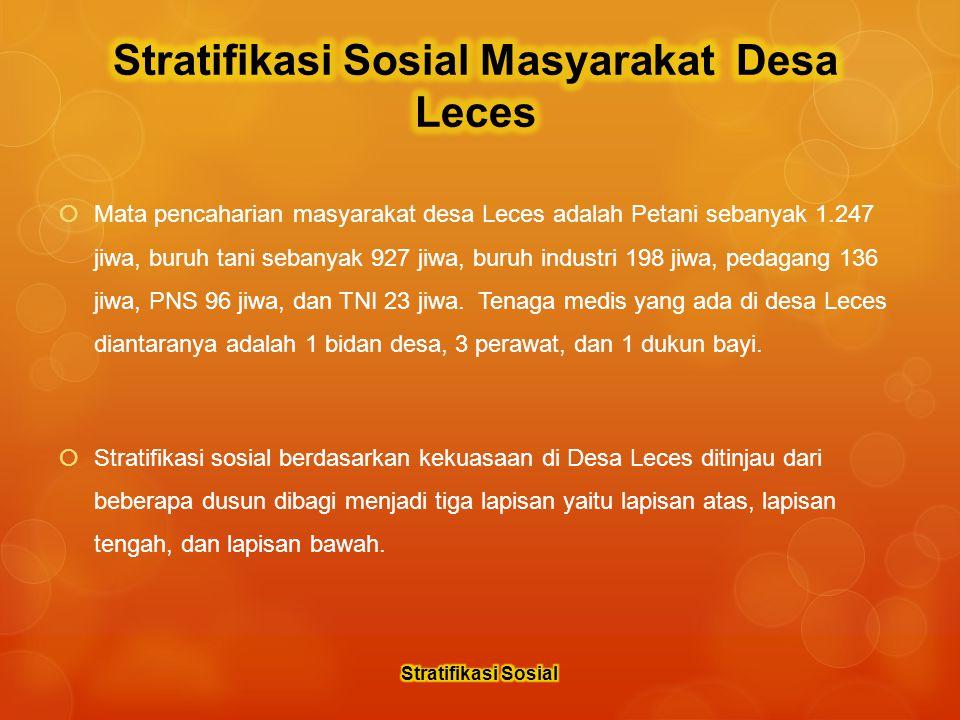  Mata pencaharian masyarakat desa Leces adalah Petani sebanyak 1.247 jiwa, buruh tani sebanyak 927 jiwa, buruh industri 198 jiwa, pedagang 136 jiwa, PNS 96 jiwa, dan TNI 23 jiwa.