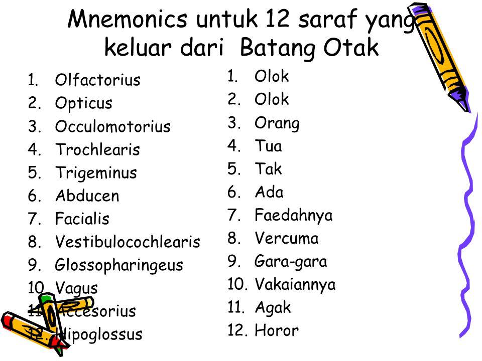 Mnemonics untuk 12 saraf yang keluar dari Batang Otak 1.Olfactorius 2.Opticus 3.Occulomotorius 4.Trochlearis 5.Trigeminus 6.Abducen 7.Facialis 8.Vestibulocochlearis 9.Glossopharingeus 10.Vagus 11.Accesorius 12.Hipoglossus 1.Olok 2.Olok 3.Orang 4.Tua 5.Tak 6.Ada 7.Faedahnya 8.Vercuma 9.Gara-gara 10.Vakaiannya 11.Agak 12.Horor
