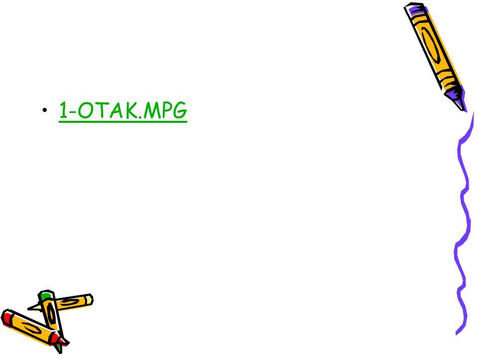 1-OTAK.MPG