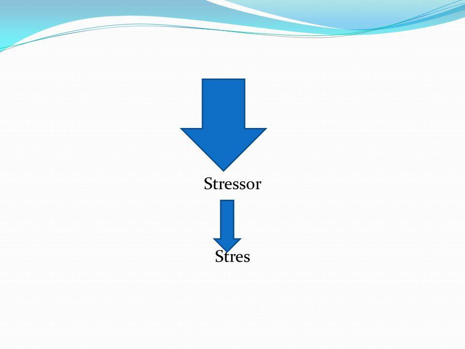 Stressor Stres