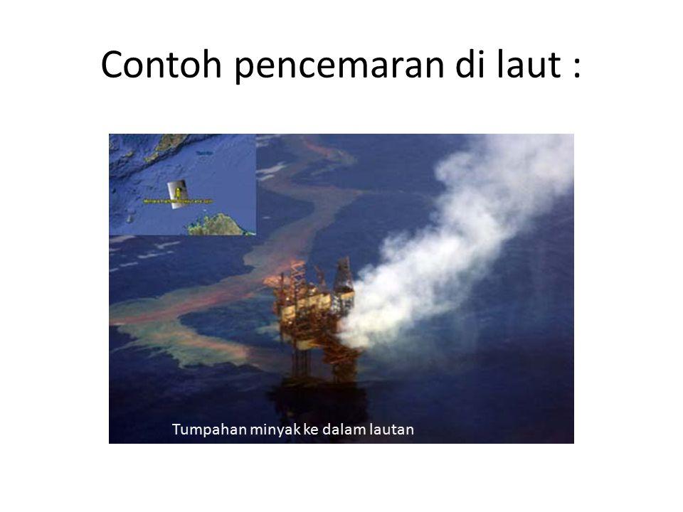 Contoh pencemaran di laut : Tumpahan minyak ke dalam lautan