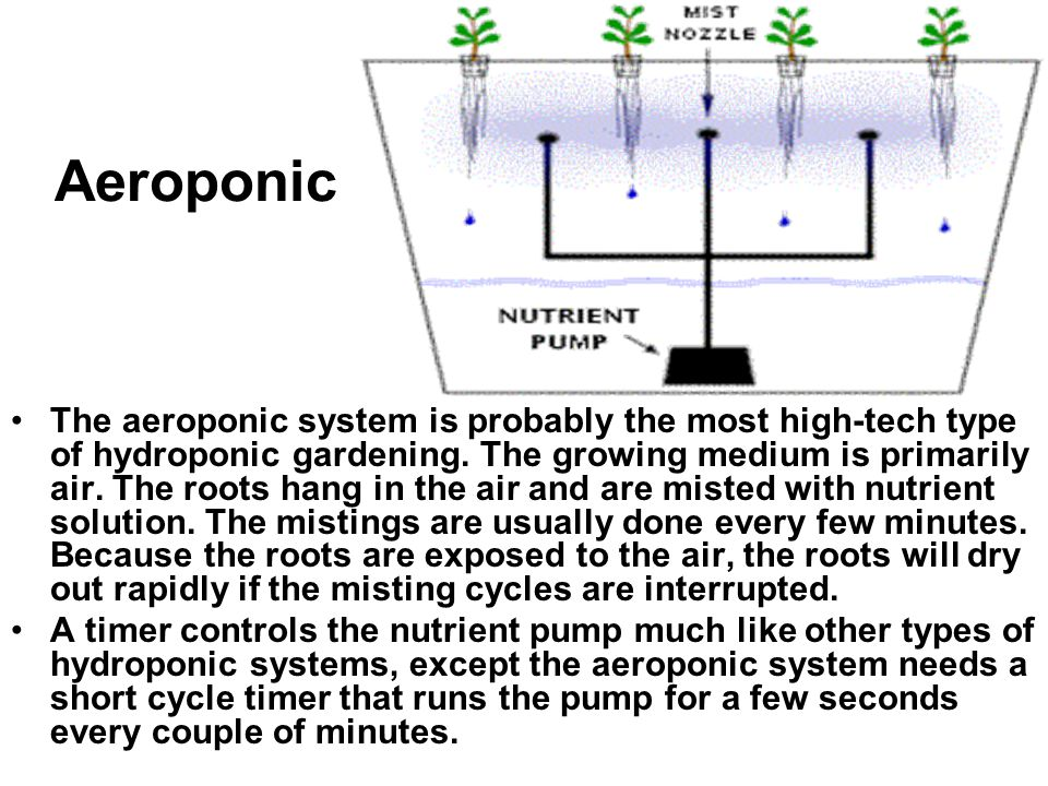 Aeroponic The aeroponic system is probably the most high-tech type of hydroponic gardening. The growing medium is primarily air. The roots hang in the