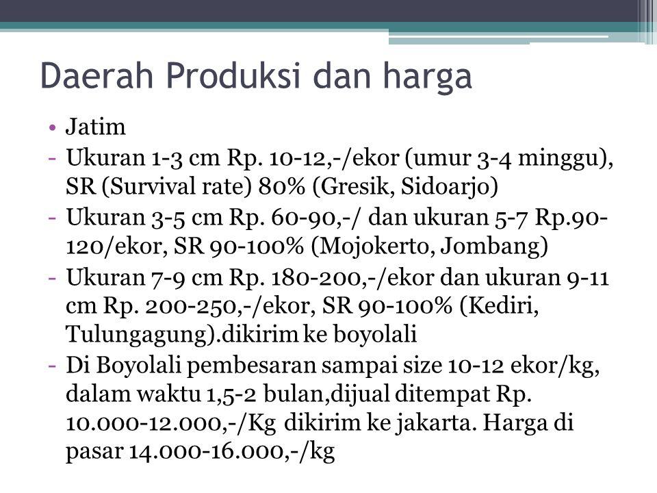JATENG -Pusat pembesaran di kampung lele (Boyolali) JABAR -Ukuran 1-3 cm Rp.100.000-150.000/1 bak (10.000 ekor), SR 80% (Cianjur, Sukabumi), langsung dibesarkan di sawah.
