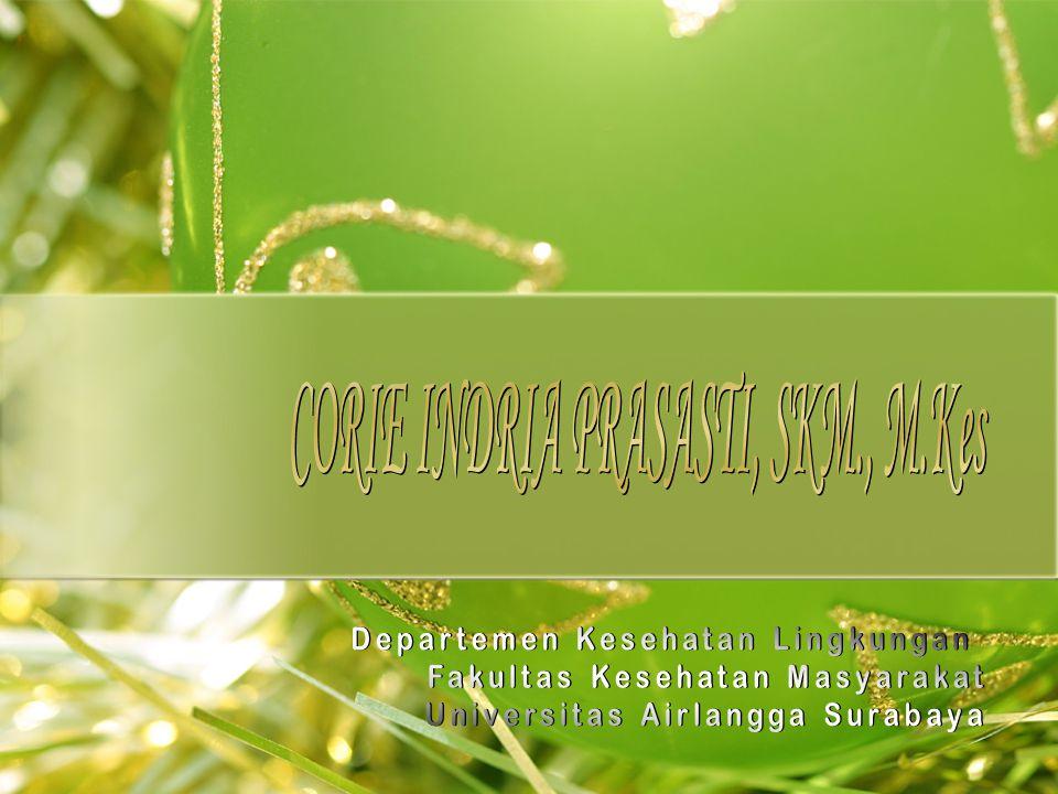 Landfill Limbah B3 -Landfill B3 di PPLi dirancang sesuai dengan standar Indonesia, Bank Dunia, dan USEPA.
