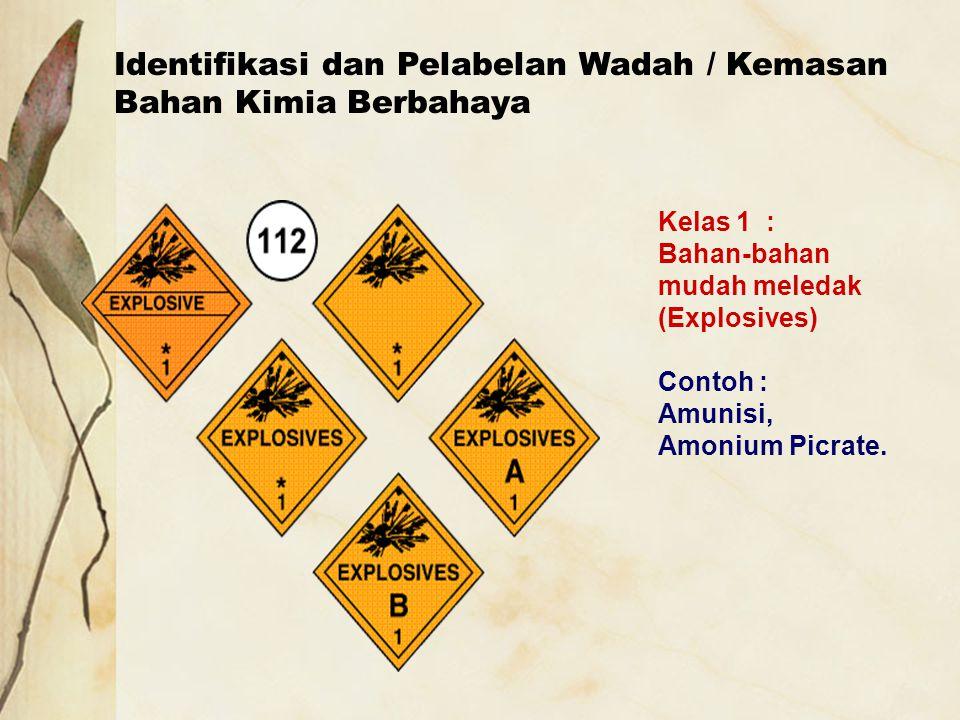 Identifikasi dan Pelabelan Wadah / Kemasan Bahan Kimia Berbahaya Kelas 1 : Bahan-bahan mudah meledak (Explosives) Contoh : Amunisi, Amonium Picrate.