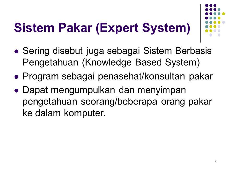Sistem Pakar (Expert System) Sering disebut juga sebagai Sistem Berbasis Pengetahuan (Knowledge Based System) Program sebagai penasehat/konsultan paka