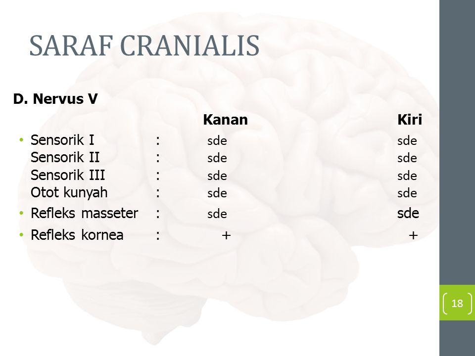 SARAF CRANIALIS D.