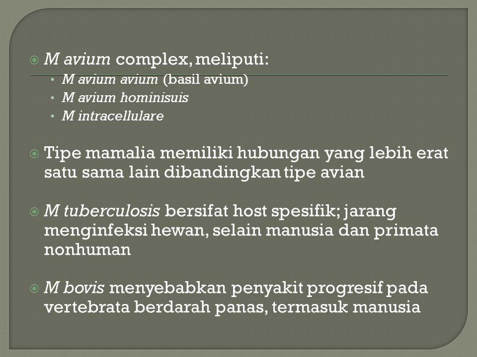  M avium complex, meliputi: M avium avium (basil avium) M avium hominisuis M intracellulare  Tipe mamalia memiliki hubungan yang lebih erat satu sama lain dibandingkan tipe avian  M tuberculosis bersifat host spesifik; jarang menginfeksi hewan, selain manusia dan primata nonhuman  M bovis menyebabkan penyakit progresif pada vertebrata berdarah panas, termasuk manusia