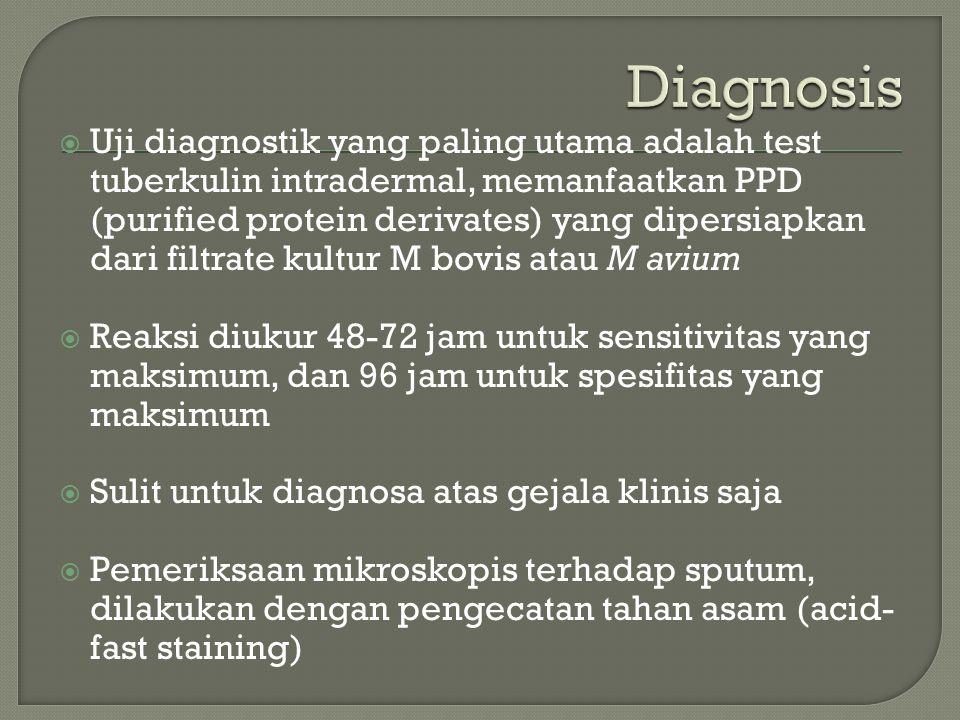  Uji diagnostik yang paling utama adalah test tuberkulin intradermal, memanfaatkan PPD (purified protein derivates) yang dipersiapkan dari filtrate kultur M bovis atau M avium  Reaksi diukur 48-72 jam untuk sensitivitas yang maksimum, dan 96 jam untuk spesifitas yang maksimum  Sulit untuk diagnosa atas gejala klinis saja  Pemeriksaan mikroskopis terhadap sputum, dilakukan dengan pengecatan tahan asam (acid- fast staining)