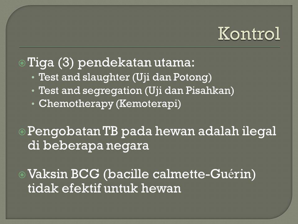  Tiga (3) pendekatan utama: Test and slaughter (Uji dan Potong) Test and segregation (Uji dan Pisahkan) Chemotherapy (Kemoterapi)  Pengobatan TB pada hewan adalah ilegal di beberapa negara  Vaksin BCG (bacille calmette-Gu é rin) tidak efektif untuk hewan