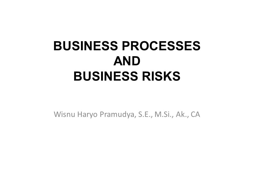 BUSINESS PROCESSES AND BUSINESS RISKS Wisnu Haryo Pramudya, S.E., M.Si., Ak., CA