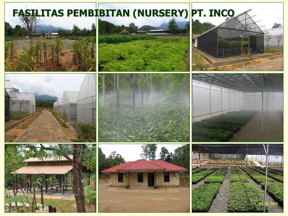 FASILITAS PEMBIBITAN (NURSERY) PT. INCO