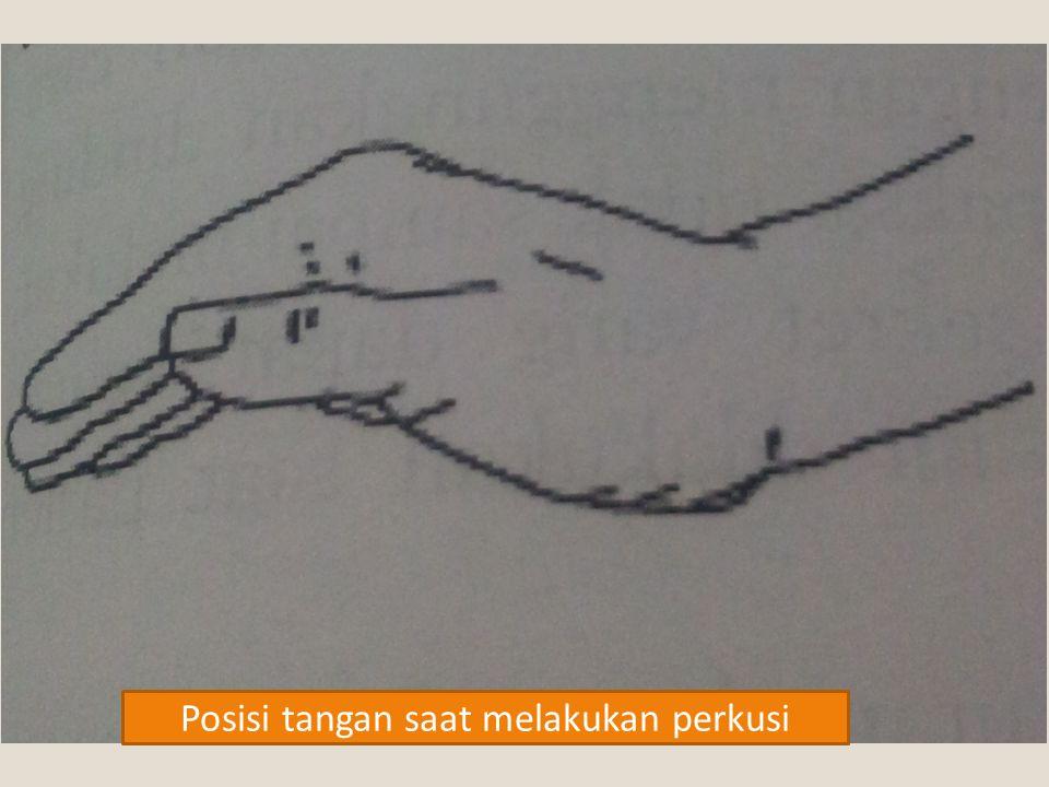 Posisi tangan saat melakukan perkusi