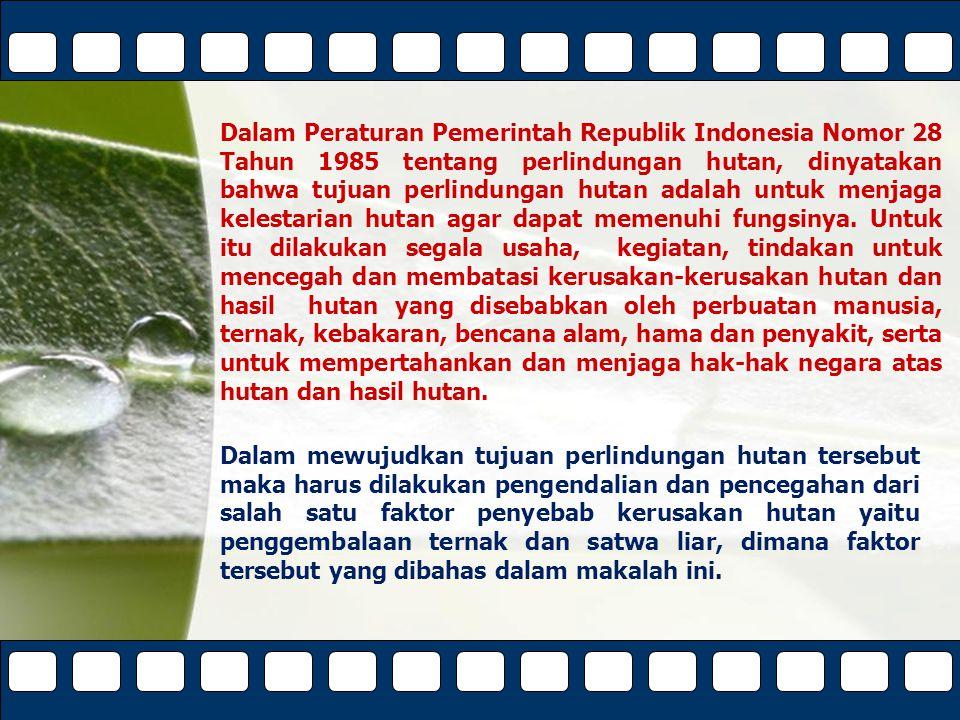Powerpoint TemplatesPage 15 Bentuk Perlindungan dan Pencegahan Kerusakan Hutan Yang Disebabkan Oleh Penggembalaan Ternak dan Satwa Liar Peraturan yang melandasi upaya penanggulangan kegiatan penggembalaan liar dalam kawasan hutan adalah UU No.