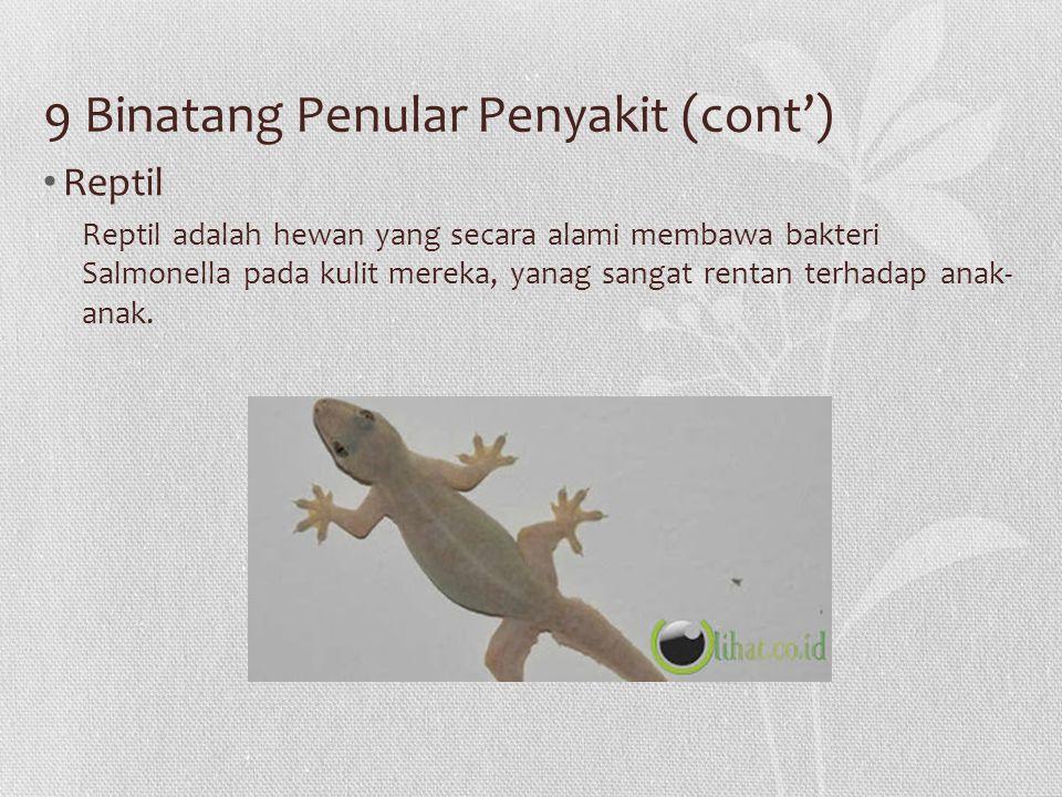 9 Binatang Penular Penyakit (cont') Reptil Reptil adalah hewan yang secara alami membawa bakteri Salmonella pada kulit mereka, yanag sangat rentan ter