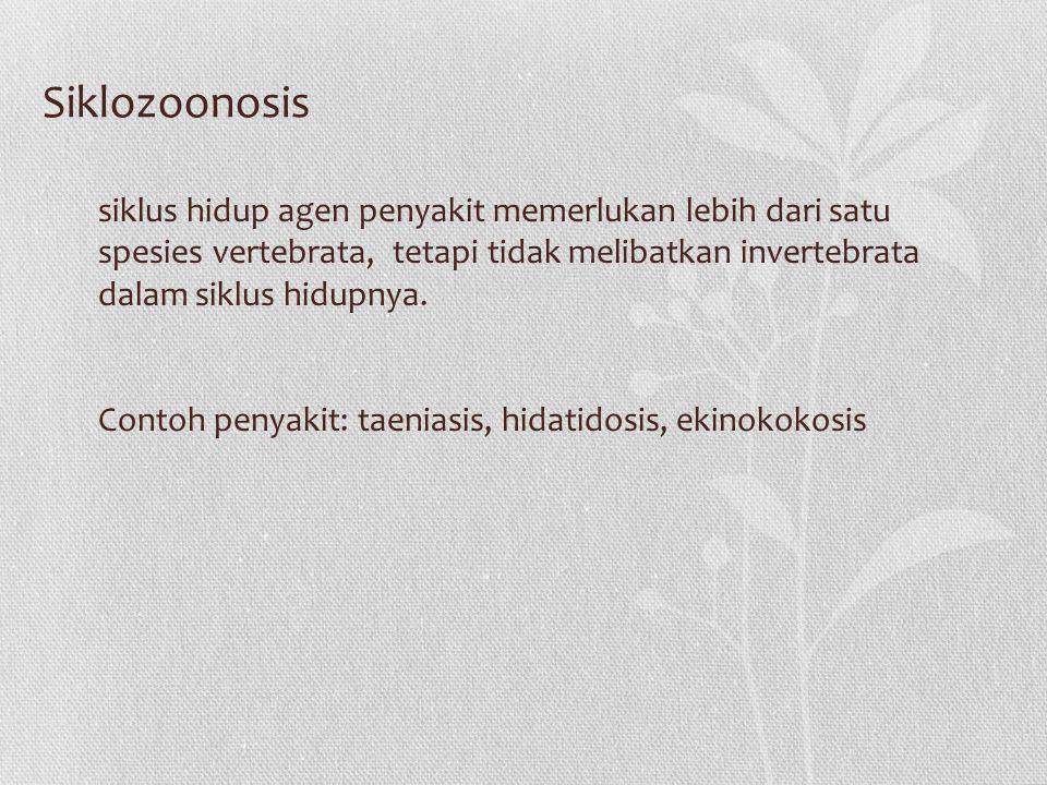 Siklus hidup agen penyakit memerlukan vertebrata dan invertebrata Contoh penyakit: tripanosomiasis, skistosomiasis, infeksi oleh arbovirus, arthropod borne-virus Metazoonosis