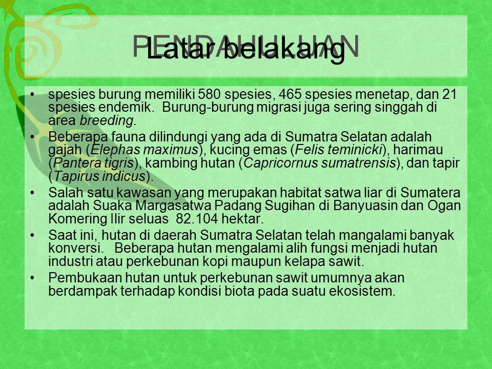 Personil tim pelaksana kegiatan terdiri dari Mahasiswa Program Pascasarjana Biologi Konservasi, Departemen Biologi, Universitas Indonesia Ketua pelaksana kegiatan dan bagian survei burung – Acep AbdullahAcep Abdullah Sekretaris dan bagian survei vegetasi komunitas tumbuhan – Windri HandayaniWindri Handayani Bendahara dan bagian survei perairan (ikan) dan burung – Ni Made RaiNi Made Rai Humas - Rahayu Siti HarjanthiRahayu Siti Harjanthi Bagian survei herpetofauna (Reptil dan amfibi) dan avertebrata tanah - Nugroho Ponco SumantoNugroho Ponco Sumanto Bagian survei primata – Fitriah BasalamahFitriah Basalamah Bagian survei perairan – Agus IsnainiAgus Isnaini Bagian survei vegetasi komunitas tumbuhan – Purity Sabila A.Purity Sabila A.
