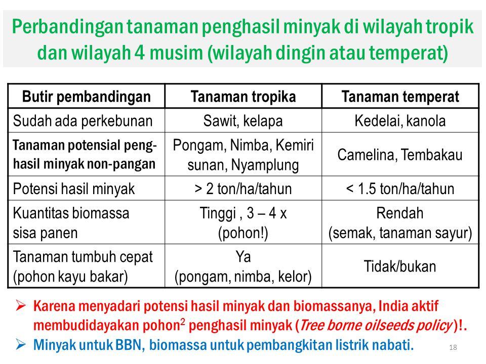 Butir pembandinganTanaman tropikaTanaman temperat Sudah ada perkebunan Sawit, kelapaKedelai, kanola Tanaman potensial peng- hasil minyak non-pangan Po