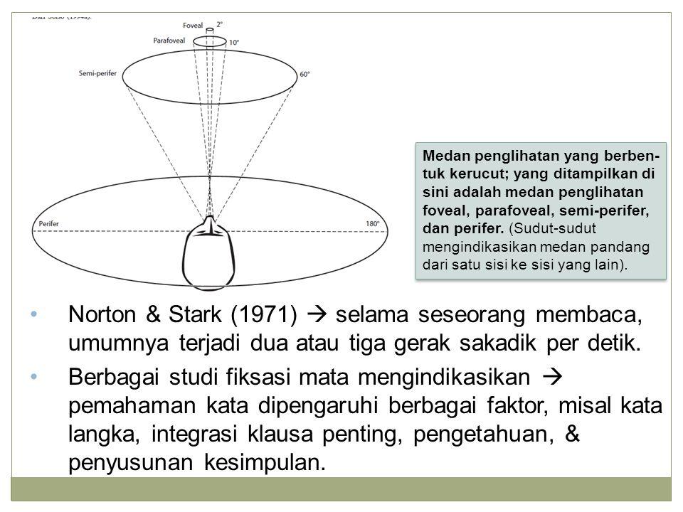 Norton & Stark (1971)  selama seseorang membaca, umumnya terjadi dua atau tiga gerak sakadik per detik. Berbagai studi fiksasi mata mengindikasikan 
