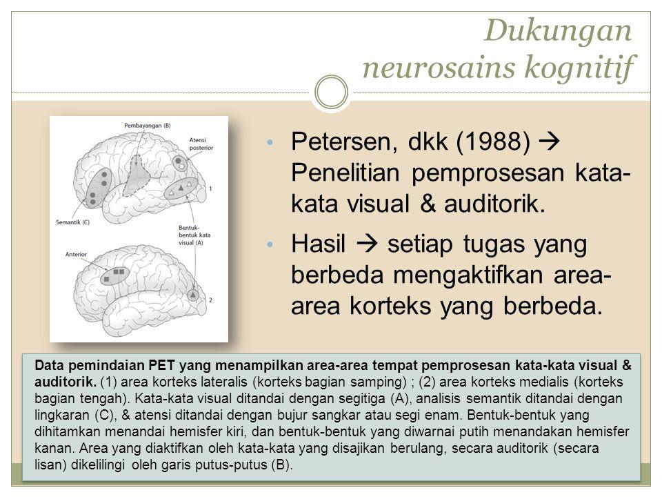 Dukungan neurosains kognitif Petersen, dkk (1988)  Penelitian pemprosesan kata- kata visual & auditorik. Hasil  setiap tugas yang berbeda mengaktifk