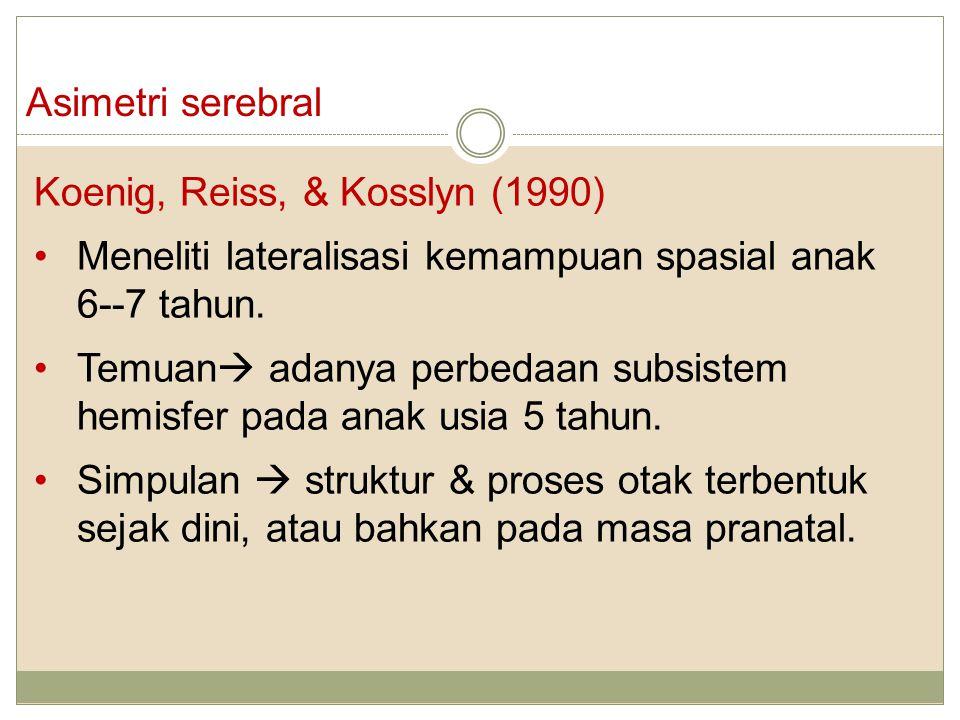 Asimetri serebral Koenig, Reiss, & Kosslyn (1990) Meneliti lateralisasi kemampuan spasial anak 6--7 tahun. Temuan  adanya perbedaan subsistem hemisfe