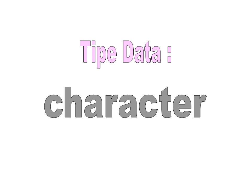 Isinya dapat dianggap : Karakter atau Nilai Numerik