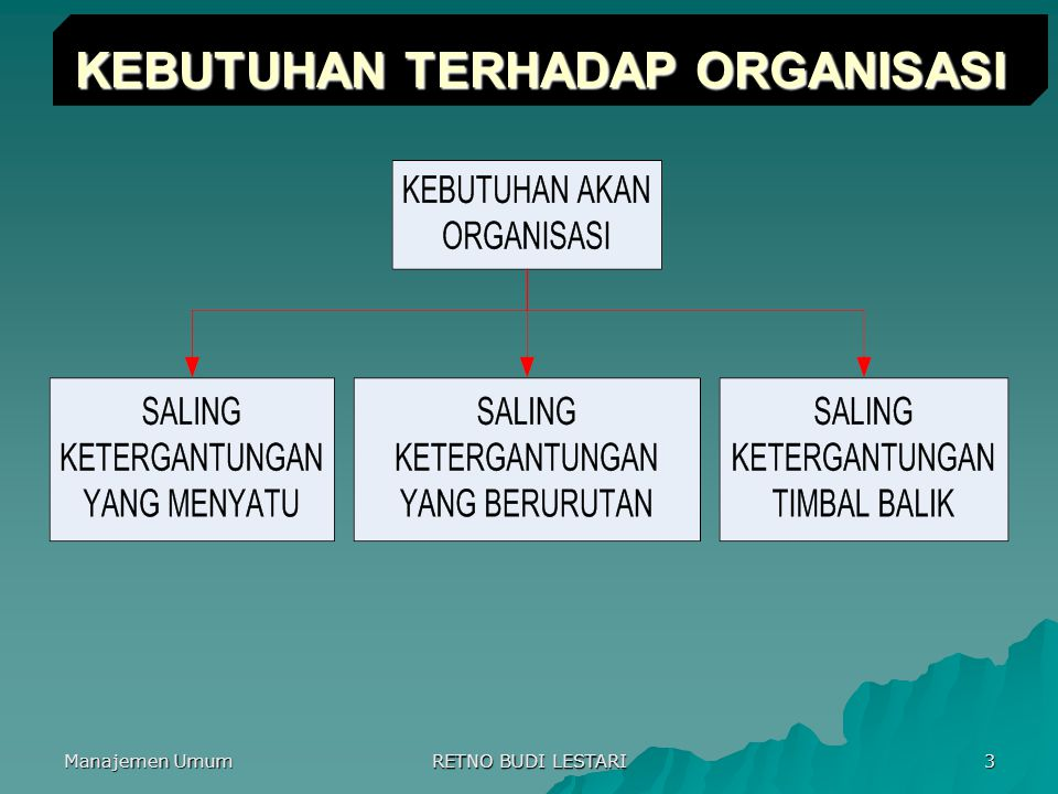 Manajemen Umum RETNO BUDI LESTARI 3 KEBUTUHAN TERHADAP ORGANISASI
