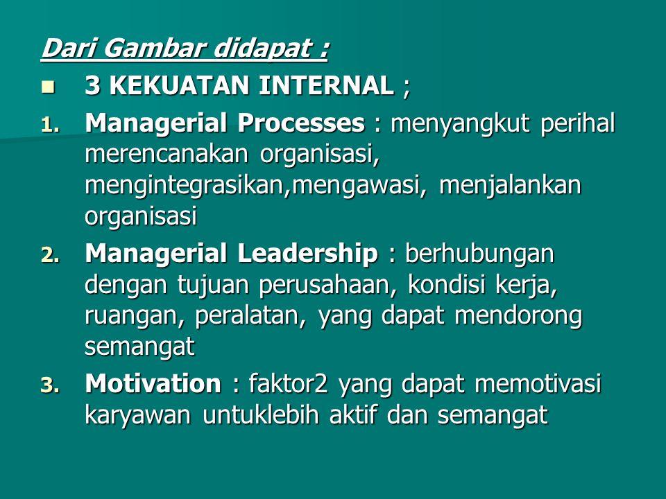 Dari Gambar didapat : 3 KEKUATAN INTERNAL ; 3 KEKUATAN INTERNAL ; 1. Managerial Processes : menyangkut perihal merencanakan organisasi, mengintegrasik