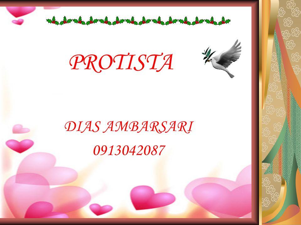 PROTISTA DIAS AMBARSARI 0913042087